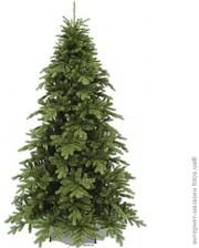 Triumph Tree Ель Nottingham de Luxe 1.85 м, зеленая
