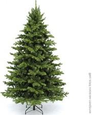 Triumph Tree Ель Sherwood de Luxe 1.85 м, зеленая