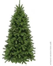 Triumph Tree Сосна Denberg 2.15 м, зеленая