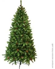 Triumph Tree Ель Empress 2.15 м, зеленая