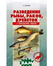 Аквариум-Принт Разведение рыбы, раков, креветок в приусадебном водоеме