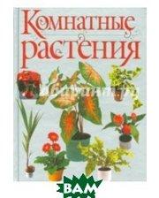 АСТ Комнатные растения