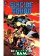DC Comics Suicide Squad: Volume 1: Trial by Fire
