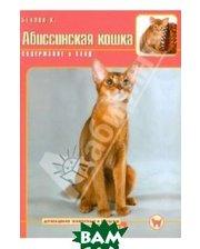 Аквариум-Принт Абиссинская кошка. Содержание и уход