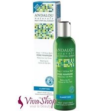 Andalou Naturals Andalou Pore Minimizer Naturals Aloe + Willow Bark