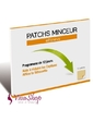 Laboratoires INELDEA Effiness Patch Minceur