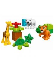 Lego DUPLO Town Вокруг света: малыши