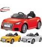 Rastar Audi TTS