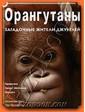 Контэнт Пейн Д. Орангутаны