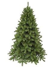 Triumph Tree Edelman Scandia (2.15м) зеленая