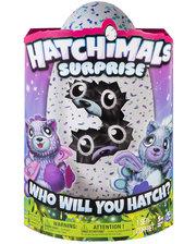 Hatchimals Spin Master Интерактивная игрушка Двойной сюрприз Котята (SM19110/6037096)