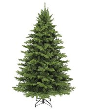 Triumph Tree Edelman Sherwood de Luxe (3.05м) зеленая