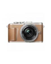 Olympus E-PL9 + 14-42mm f/3.5-5.6 EZ Brown