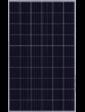 JA Solar JAP60S01-275W 5BB Poly 1000V