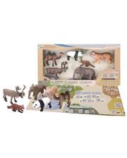 Wenno Животные Азии с QR-картой (WAS1701)