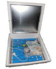 Курочка Ряба ИБ-42 автомат тэновый