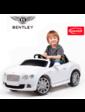 Rastar Bentley GTC