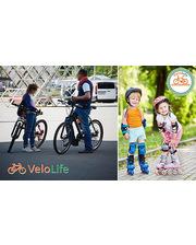 """Прокат велосипедов или роликов на ВДНХ со скидкой до 62% от компании """"Velolife"""""""