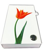 Старт-Полиграф Набор из стикеров и закладок PET NotesMark «Тюльпан»