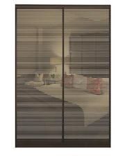 Матролюкс Шкаф купе на 2 двери + фасады из тонированных зеркал + рисунки пескоструй