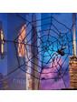Гигантская паутина «Black Widow Giant Spider Web»