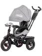 baby tilly Велосипед трехколесный CAYMAN с пультом, серый, (T-381/2 Серый)