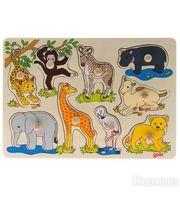 goki Африканские животные (57829)