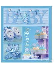 EVG 20sheet Baby collage Blue w/box (UA)