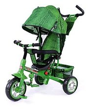 baby tilly Blue Zoo-Trike BT-CT-0005 Green
