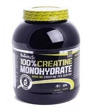 BioTech 100% creatine monohydrate 1000 г
