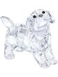 Swarovski LABRADOR PUPPY, STANDING 5400141